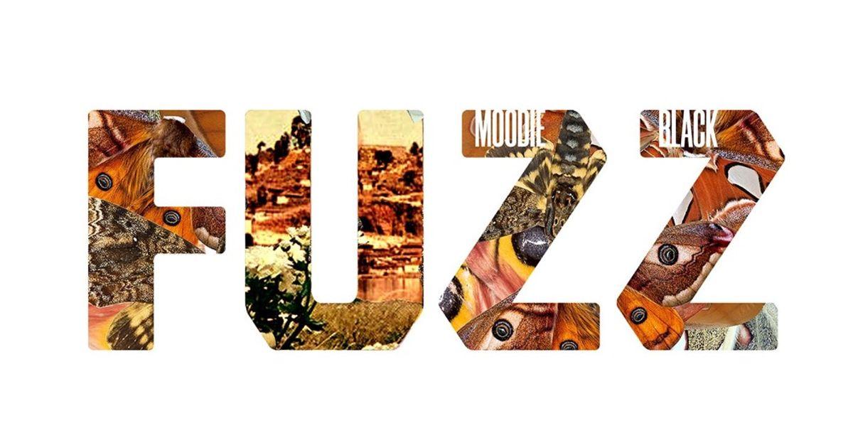 Fuzz by Moodie Black